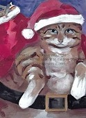 Kitty Kringle