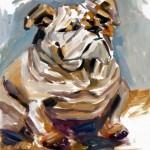 Bull Dog Oil Painting